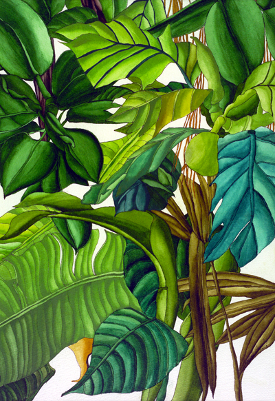 Tropical Moment - Tropical Beeze and Green Leaves