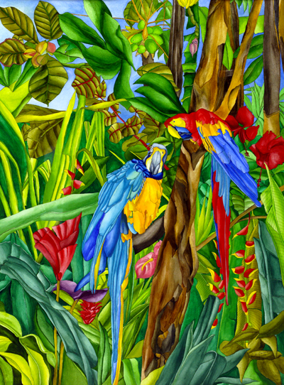 Rainforest Rituals - Macaws among Hibiscus, Ginger, Heliconias, and Banana Plants