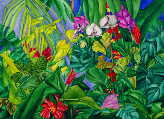 Tropical Garden - Energy of Exotic Flowers